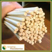 Bamboo-Macadamia-stake-40cm-3
